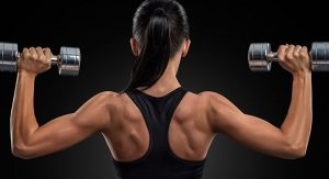 Muscle Building Programs